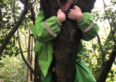 Forest Fun in Class 2