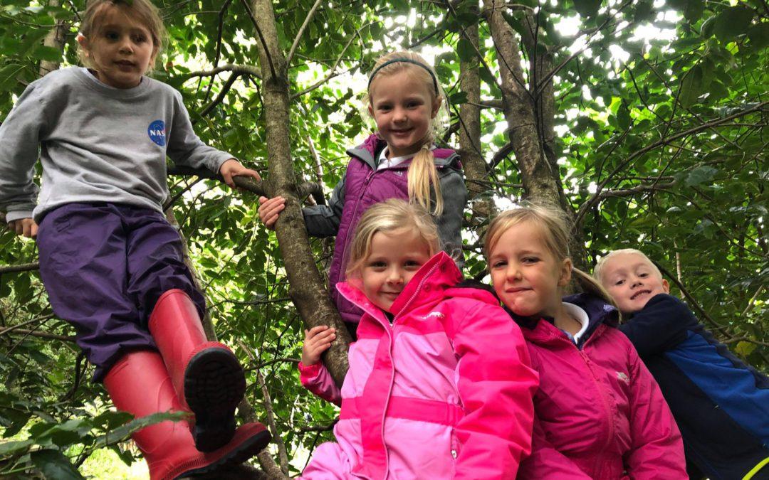 Class 2 Forest School Fun